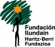 ILUNDAIN logo 2013