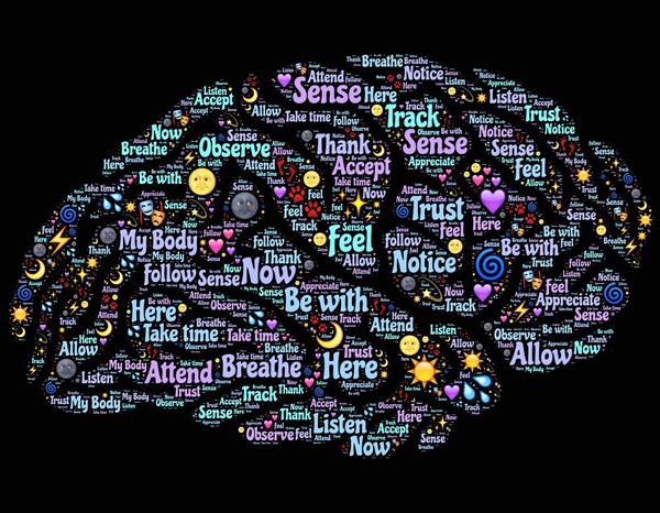 Neuroeducación, ¿Rigidez o plasticidad?